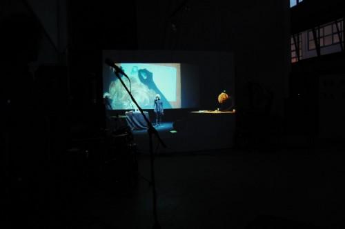video screenings —Shobo Shobo