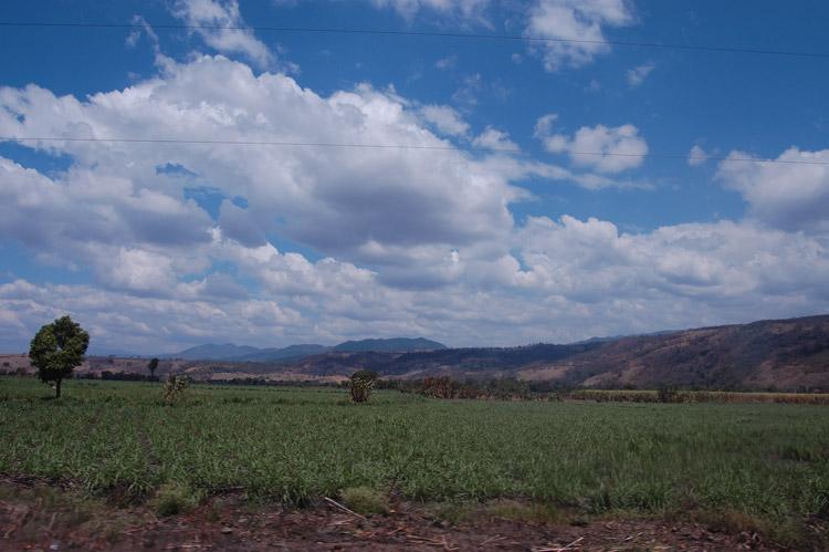 Fupete fupete DSC 6058 Tierra Y Azul 2008